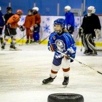 В хоккей играют настоящие девчонки... :: Алексей Бойко