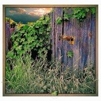 В заброшенном саду... :: Григорий Кучушев