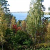Hvitträsk, вид  на  озера Виттреск («Белое озеро») :: Елена Павлова (Смолова)