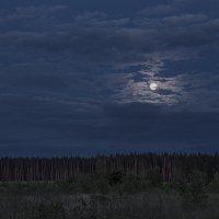 В плену у луны :: Юрий Клишин