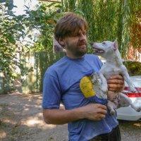 Собаки знают о любви побольше нас, друзья мои... :: Юлия Бабитко