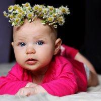 Цветы2 :: Женечка Зяленая