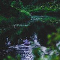 nature :: Анастасия Трошина