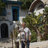 Тунис :: сергей адольфович