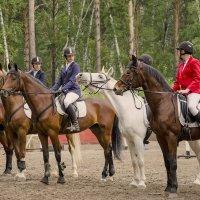 Все кони,как кони,а я БЕЛАЯ! :: Татьяна Степанова