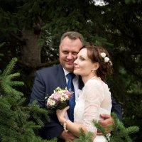 Свадебное фото :: Катерина Кучер
