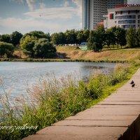 Минск. :: ольга каверзникова