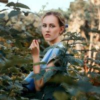 В чужом огороде :: Дмитрий Бегма