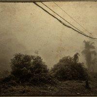 ... :: Alexander Romanov (Roalan Photos)