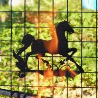 Сквозь  огонь и пламя  ...  :-) :: Galina Leskova