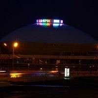 Цирк зажигает огни :: Наталья Серегина