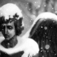 Ангел ушедшей зимы... :: Константин Николаенко
