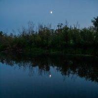 Две луны :: Светлана Шишова