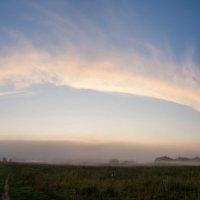 Утро, туман, небо... :: Светлана Шишова