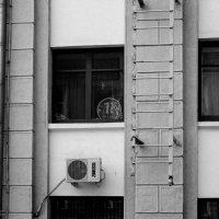 Рубль :: Артемий Кошелев