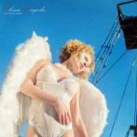 ангел :: Anna Gracheva