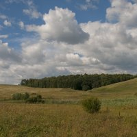 Окрестности деревни Лапшлей... :: Фёдор Куракин