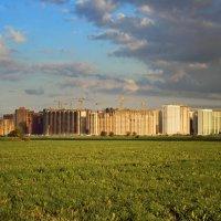 Районы, кварталы... :: Тата Казакова