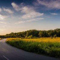 Прогулка в последних лучах уходящего дня... :: Ксения Довгопол