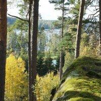 Вид на Виттреск-ярви (Белое озеро) :: Елена Павлова (Смолова)