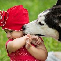 Поцелуй хаски... :: Серафима Марченко