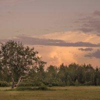 Закат окончил летний тёплый вечер... :: Татьяна Титова