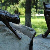 Кошки :: Дмитрий Арсеньев