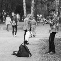 Оглянуться назад... :: Михаил Власенко (мив; miv)