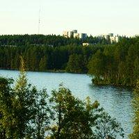 Карелия, город Костомукша :: Наталья