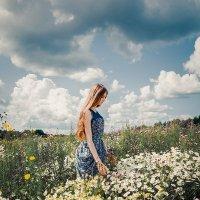 Ромашечки :: Анастасия Лаптева