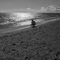 Финский залив(Комарово) :: Владимир Питерский