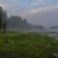 Туман, туман... :: Анатолий Иргл