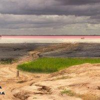 Дорога к озеру :: Оксана Волина