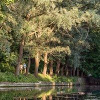 Прогулка у озера :: Павел Голубев