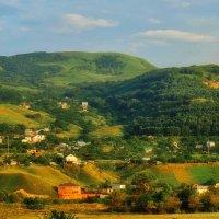 Новый поселок :: M Marikfoto