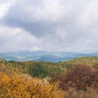 Крымские холмы :: Zifa Dimitrieva