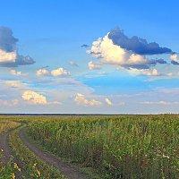 Деревенский пейзаж :: Эркин Ташматов
