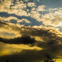 Небесный дракон! :: Павел Данилевский