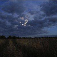 ...пробивается луна :: galina bronnikova