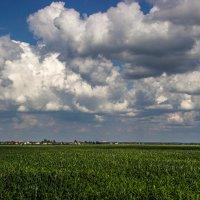 В небе облака :: Elena Ignatova