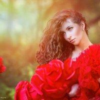 Red Rose :: Марина Зиновьева
