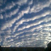 Вечернее небо... :: Сергей Форос