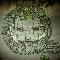 street art :: олеся тронько
