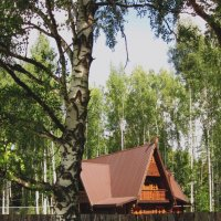 Домик в лесу :: Павел Зюзин