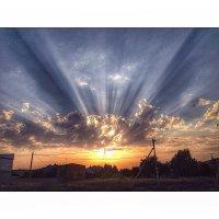 Мобильное фото :: Юлия Кутовая