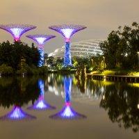 Singapore Marina Bay Garden :: Евгений Землянухин