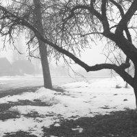 Пять холодных квадратов (1) :: Юрий Бондер