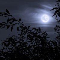 Голубая луна :: Георгий Рябов