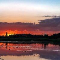 Утром на озере. :: Владимир Фисенко