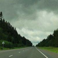 В даль, за горизонт асфальта. :: Владимир Гилясев